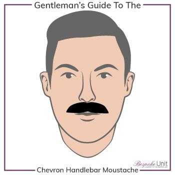 Graphic of Chevron Handlebar Family Moustache Type